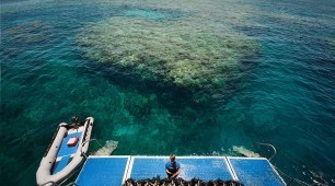Great Barrier Reef tour Cairns